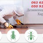 Уничтожение любых видов насекомых . Гарантия