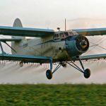 Услуги авиации по десикации кукурузы